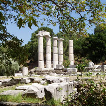 Paliapoli